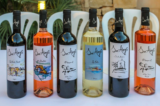 Vinyes Son Alegre wines