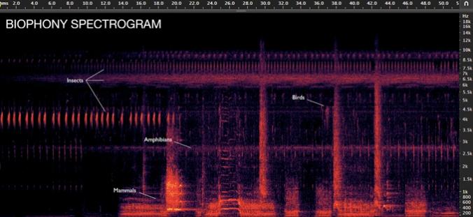 soundscapes-10